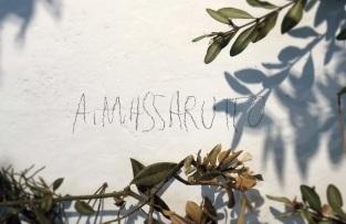 "Antonio Massarutto ""Bestiarum"""